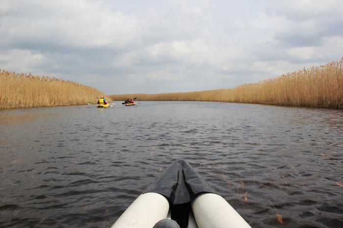 Річка Прип