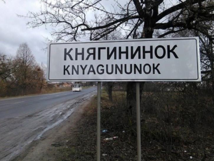 Княгининівська громада може виграти конкурс від  Ukrainer