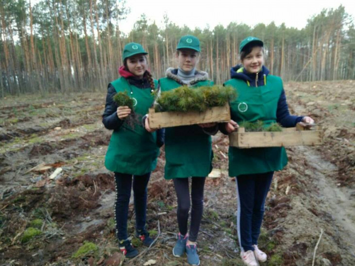 Як школярі з В'язівного садили ліс