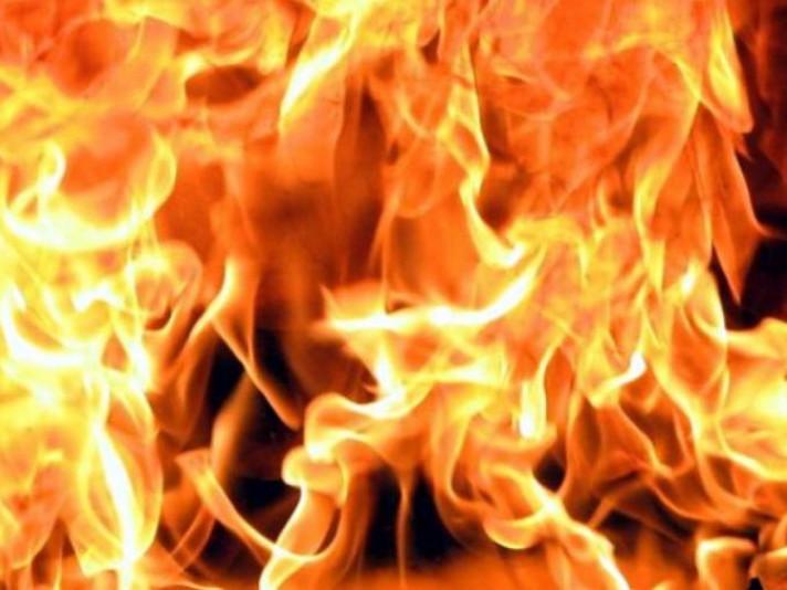 Через спалювання сухої трави у Ковелі горів дачний будинок / Фото ілюстративне