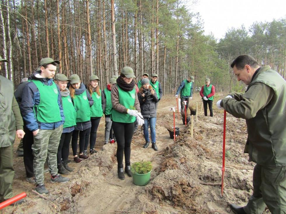 Учням роз'яснють як садити дерева