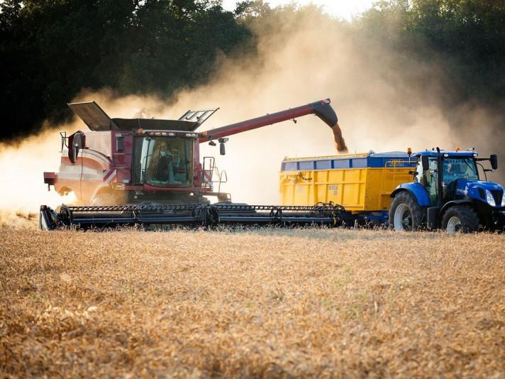 У 2019 році на Волині зібрали рекордний урожай зернових