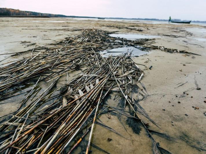 На Шацьких озерах – дефіцит кліматичного водного балансу