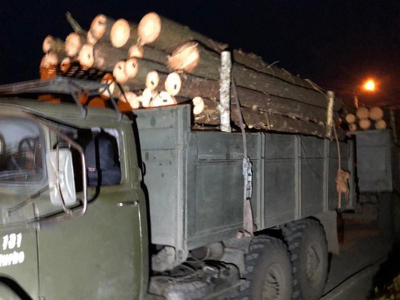 У Ратному правоохоронці зупинили вантажівку із незаконною деревиною
