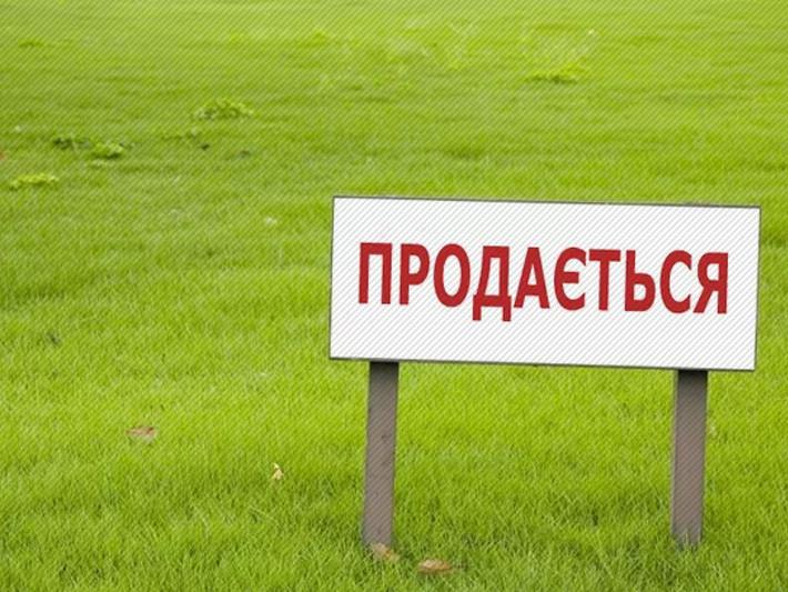 Земельні торги / Фото ілюстративне