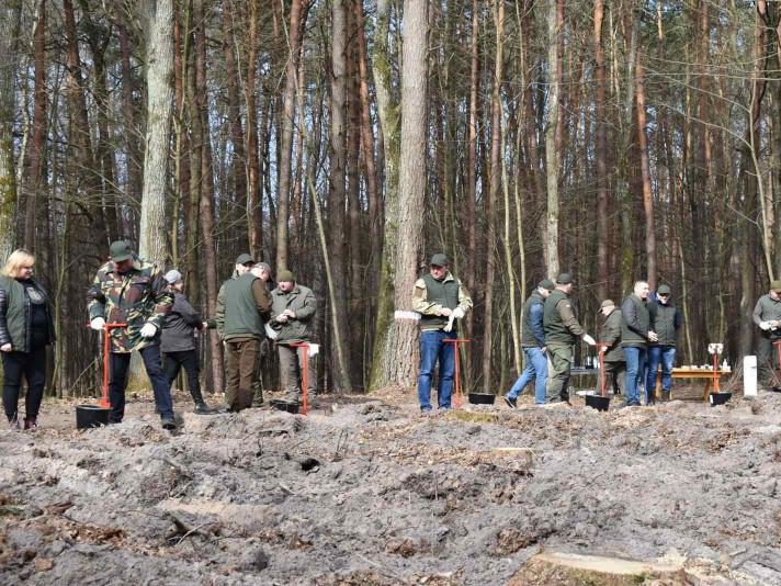 Фото із акції у Сокиричівському лісництві