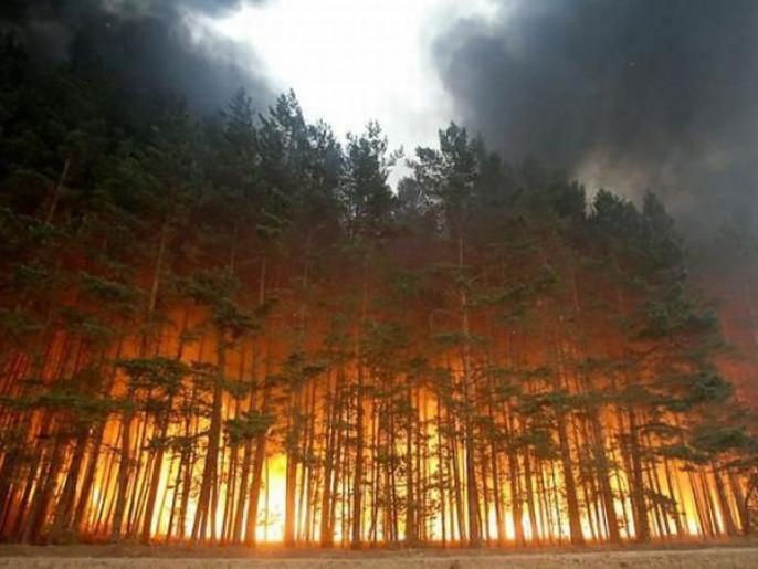 в області — надзвичайний рівень пожежної небезпеки