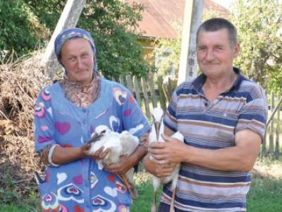 Подружжя Петра і Надії Костючиків