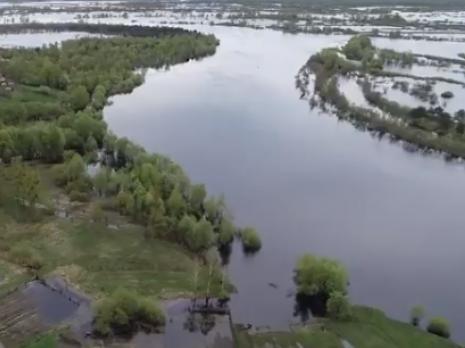 Прип'ять - річка, що об'єднала українських і білоруських дітей