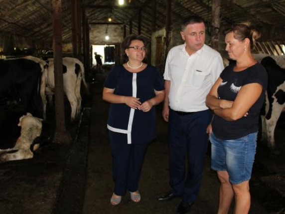 Горохівщина – один із районів, що найбільш підтримує аграрну галузь з місцевого бюджету