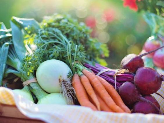 У Лукові збирають овочі для лікарні