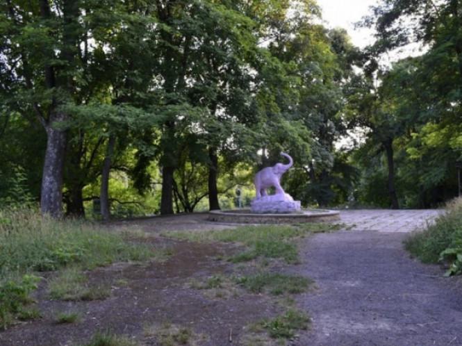 Ботанічний сад у Луцьку