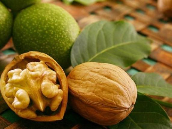 Волинські аграрії поділилися секретами, як заробляти на горіхах