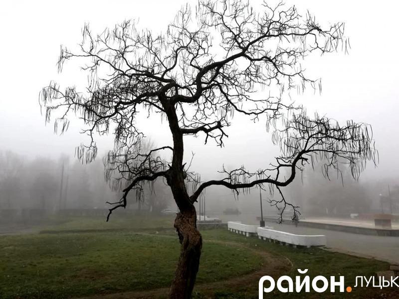 Туман у Луцьку