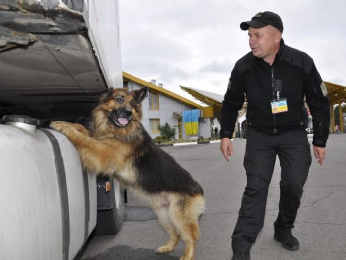 Службовий собака виявив наркотики