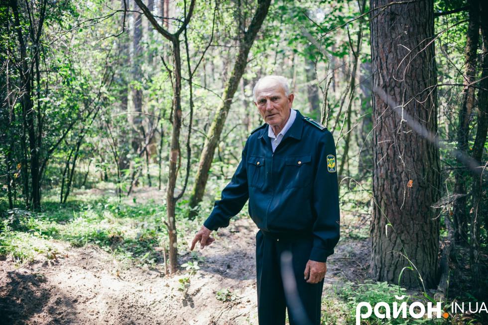 Ліс додає здоров'я і сили