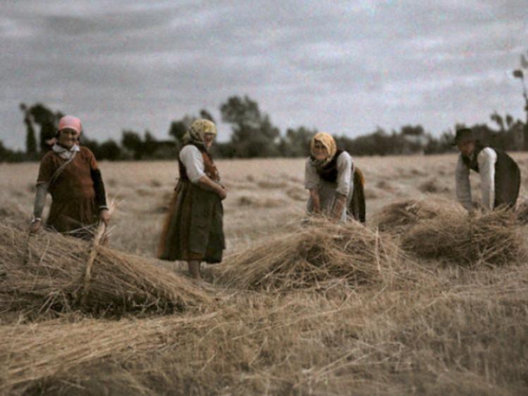 Як Друга Річ Посполита проводила земельну реформу на Волині 100 років тому