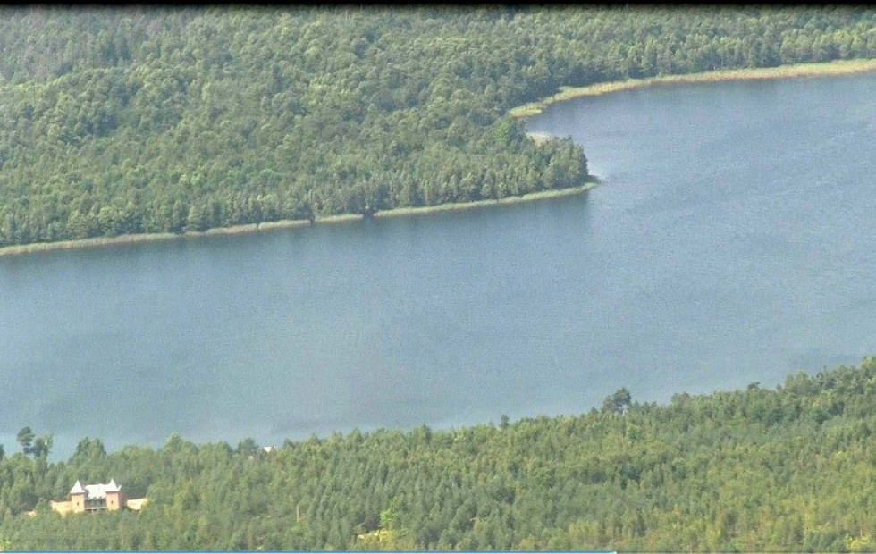 Після відеоспостереження авіапатрулювання тоді вважали найефективнішим методом охорони лісів від займань.