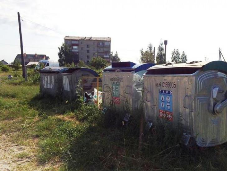 Контейнери для сміття в Любешеві